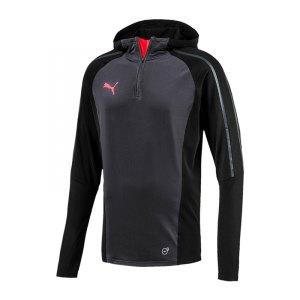 puma-evotrg-hoody-sweatshirt-schwarz-f06-longsleeve-langarm-lifestyle-freizeit-655329.jpg