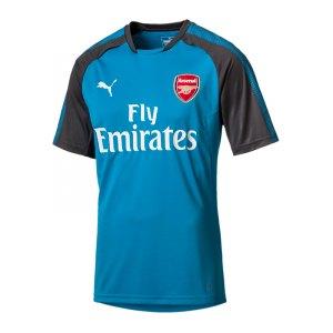 puma-fc-arsenal-london-trainingsshirt-f02-fanshop-fanartikel-replica-freizeitshirt-fanshirt-751711.jpg