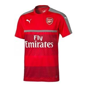 puma-fc-arsenal-trainingsshirt-rot-grau-f10-fanshirt-t-shirt-kurzarmtop-premier-league-gunners-men-herren-749753.jpg