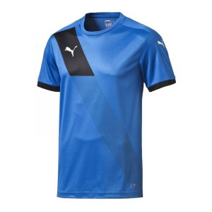 puma-finale-shortsleeved-shirt-trikot-teamsport-teamwear-spielertrikot-kurzarmtrikot-men-herren-men-blau-f02-702069.jpg