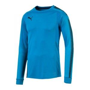 puma-gk-shirt-torwarttrikot-kids-blau-schwarz-f62-torhueter-torwartausstattung-torwartkleidung-mannschaftssport-ausstattung-703067.jpg