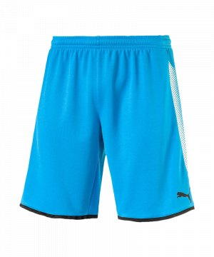 puma-gk-short-torwartshort-blau-schwarz-f62-torwart-goalkeeper-torspieler-short-hose-kurz-herren-men-maenner-703068.jpg
