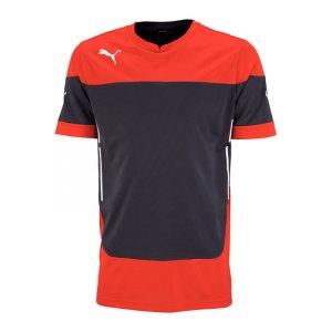 puma-indomitable-trainigsshirt-jersey-t-shirt-maenner-man-training-trainingskleidung-mannschaftskleidung-teamwear-rot-schwarz-653740.jpg