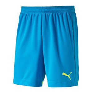 puma-it-evo-training-short-hose-kurz-sportbekleidung-men-herren-maenner-blau-f52-654757.jpg