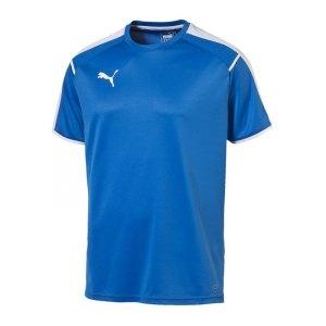 puma-it-trainingsshirt-t-shirt-kurzarmshirt-polyestershirt-men-herren-maenner-blau-weiss-f49-654605.jpg