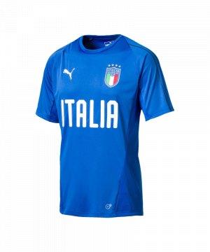 puma-italien-training-t-shirt-blau-f01-fanshop-nationalmannschaft-weltmeisterschaft-spielerkleidung-shortsleeve-kurzarm-752316.jpg