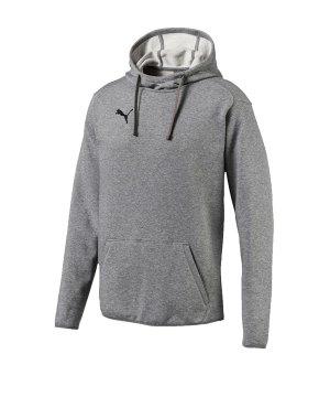 heißer Verkauf online c1298 ea954 Puma Sweatshirts | Kapuzensweat | Hoodies | Puma Foundation ...