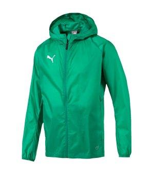 puma-liga-training-rain-jacket-jacke-gruen-f05-fussball-spieler-teamsport-mannschaft-verein-655304.jpg
