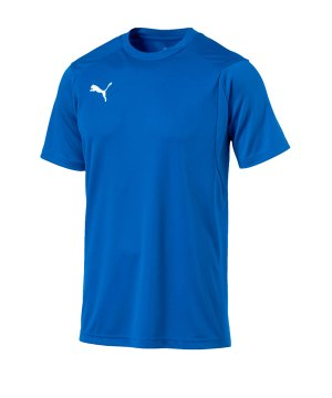 puma-liga-training-t-shirt-blau-f02-shirt-team-mannschaftssport-ballsportart-training-workout-655308.jpg