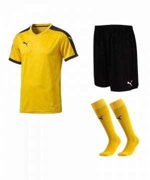 puma-pitch-e-trikotset-gelb-f07-team-mannschaft-sport-bekleidung-spiel-match-teamwear-702070-701945-702565.jpg