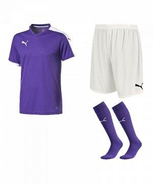 puma-pitch-e-trikotset-lila-f10-team-mannschaft-sport-bekleidung-spiel-match-teamwear-702070-701945-702565.jpg