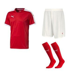 puma-pitch-e-trikotset-rot-f01-team-mannschaft-sport-bekleidung-spiel-match-teamwear-702070-701945-702565.jpg