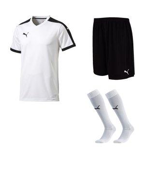 puma-pitch-e-trikotset-weiss-f04-team-mannschaft-sport-bekleidung-spiel-match-teamwear-702070-701945-702565.jpg