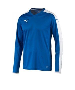 puma-pitch-longsleeved-shirt-trikot-kids-langarm-kinder-kindershirt-trainingskleidung-mannschaftskleidung-teamwear-langarmtrikot-blau-f02-702088.jpg