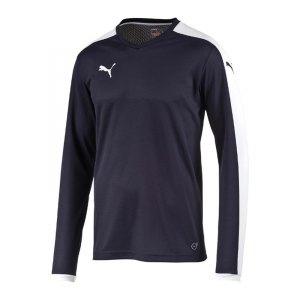 puma-pitch-longsleeved-shirt-trikot-kids-langarm-kinder-kindershirt-trainingskleidung-mannschaftskleidung-teamwear-langarmtrikot-blau-f06-702088.jpg