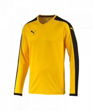 puma-pitch-longsleeved-shirt-trikot-kids-langarm-kinder-kindershirt-trainingskleidung-mannschaftskleidung-teamwear-langarmtrikot-gelb-f07-702088.jpg