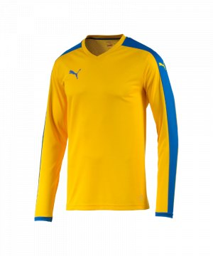 puma-pitch-longsleeved-shirt-trikot-kids-langarm-kinder-kindershirt-trainingskleidung-mannschaftskleidung-teamwear-langarmtrikot-gelb-f20-702088.jpg