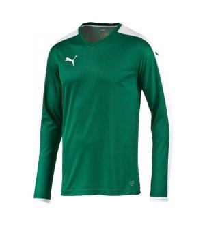puma-pitch-longsleeved-shirt-trikot-kids-langarm-kinder-kindershirt-trainingskleidung-mannschaftskleidung-teamwear-langarmtrikot-gruen-f05-702088.jpg