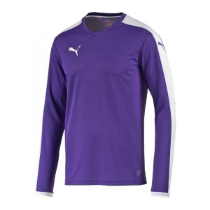 puma-pitch-longsleeved-shirt-trikot-kids-langarm-kinder-kindershirt-trainingskleidung-mannschaftskleidung-teamwear-langarmtrikot-lila-f10-702088.jpg