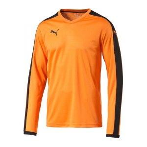 puma-pitch-longsleeved-shirt-trikot-kids-langarm-kinder-kindershirt-trainingskleidung-mannschaftskleidung-teamwear-langarmtrikot-orange-f08-702088.jpg