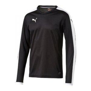 puma-pitch-longsleeved-shirt-trikot-kids-langarm-kinder-kindershirt-trainingskleidung-mannschaftskleidung-teamwear-langarmtrikot-schwarz-f03-702088.jpg