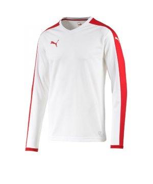 puma-pitch-longsleeved-shirt-trikot-kids-langarm-kinder-kindershirt-trainingskleidung-mannschaftskleidung-teamwear-langarmtrikot-weiss-f12-702088.jpg