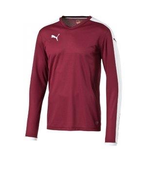 puma-pitch-longsleeved-shirt-trikot-langarm-herren-maenner-man-herrenshirt-trainingskleidung-mannschaftskleidung-teamwear-rot-f09-702088.jpg