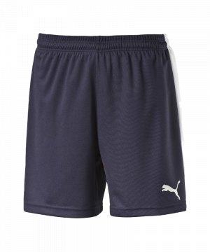 puma-pitch-short-mit-innenslip-hose-kurz-herrenshort-teamwear-teamsport-vereinsausstattung-men-herren-maenner-blau-f06-702075.jpg