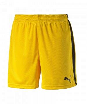 puma-pitch-short-mit-innenslip-hose-kurz-herrenshort-teamwear-teamsport-vereinsausstattung-men-herren-maenner-gelb-f07-702075.jpg