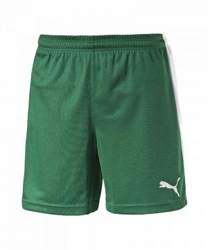puma-pitch-short-mit-innenslip-hose-kurz-herrenshort-teamwear-teamsport-vereinsausstattung-men-herren-maenner-gruen-f05-702075.jpg