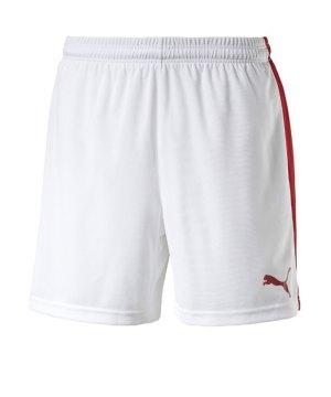 puma-pitch-short-mit-innenslip-hose-kurz-herrenshort-teamwear-teamsport-vereinsausstattung-men-herren-maenner-weiss-f12-702075.jpg
