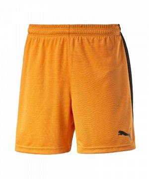 puma-pitch-short-mit-innenslip-hose-kurz-kindershort-teamwear-teamsport-vereinsausstattung-kids-children-kinder-orange-f08-702075.jpg