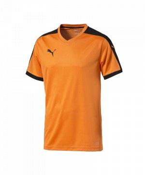 puma-pitch-shortsleeved-shirt-trikot-kurzarmtrikot-jersey-herrentrikot-teamwear-vereinsausstattung-men-herren-orange-f08-702070.jpg
