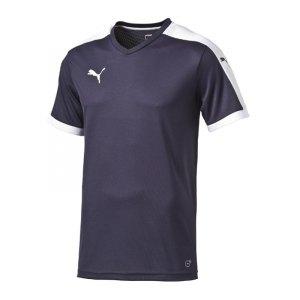 puma-pitch-shortsleeved-shirt-trikot-kurzarmtrikot-jersey-kindertrikot-teamwear-vereinsausstattung-kids-children-blau-f06-702070.jpg