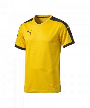 puma-pitch-shortsleeved-shirt-trikot-kurzarmtrikot-jersey-kindertrikot-teamwear-vereinsausstattung-kids-children-gelb-f07-702070.jpg