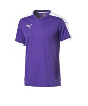 puma-pitch-shortsleeved-shirt-trikot-kurzarmtrikot-jersey-kindertrikot-teamwear-vereinsausstattung-kids-children-lila-f10-702070.jpg