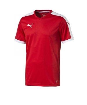 puma-pitch-shortsleeved-shirt-trikot-kurzarmtrikot-jersey-kindertrikot-teamwear-vereinsausstattung-kids-children-rot-f01-702070.jpg