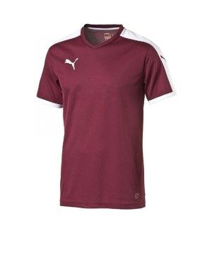 puma-pitch-shortsleeved-shirt-trikot-kurzarmtrikot-jersey-kindertrikot-teamwear-vereinsausstattung-kids-children-rot-f09-702070.jpg