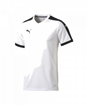 puma-pitch-shortsleeved-shirt-trikot-kurzarmtrikot-jersey-kindertrikot-teamwear-vereinsausstattung-kids-children-weiss-f04-702070.jpg
