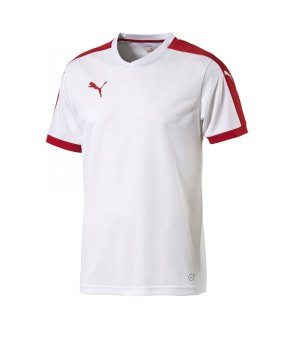 puma-pitch-shortsleeved-shirt-trikot-kurzarmtrikot-jersey-kindertrikot-teamwear-vereinsausstattung-kids-children-weiss-f12-702070.jpg