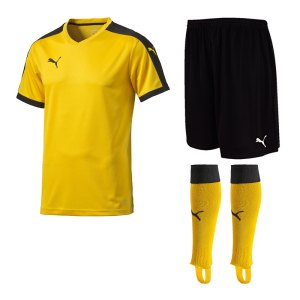 puma-pitch-trikotset-gelb-f07-team-mannschaft-sport-bekleidung-spiel-match-teamwear-702070-701945-702565.jpg