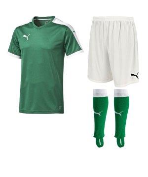 puma-pitch-trikotset-gruen-f05-team-mannschaft-sport-bekleidung-spiel-match-teamwear-702070-701945-702565.jpg