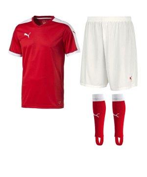 puma-pitch-trikotset-rot-f01-team-mannschaft-sport-bekleidung-spiel-match-teamwear-702070-701945-702565.jpg