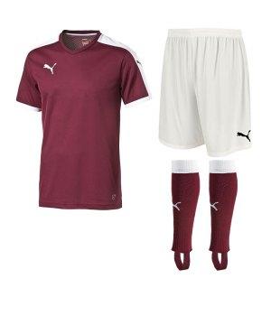 puma-pitch-trikotset-rot-f09-team-mannschaft-sport-bekleidung-spiel-match-teamwear-702070-701945-702565.jpg