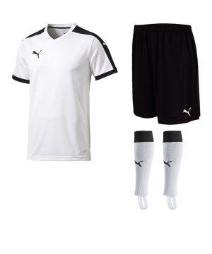 puma-pitch-trikotset-weiss-f04-team-mannschaft-sport-bekleidung-spiel-match-teamwear-702070-701945-702565.jpg