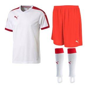 puma-pitch-trikotset-weiss-f12-team-mannschaft-sport-bekleidung-spiel-match-teamwear-702070-701945-702565.jpg