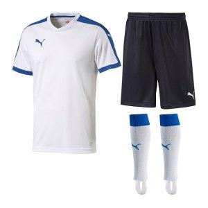 puma-pitch-trikotset-weiss-f13-team-mannschaft-sport-bekleidung-spiel-match-teamwear-702070-701945-702565.jpg