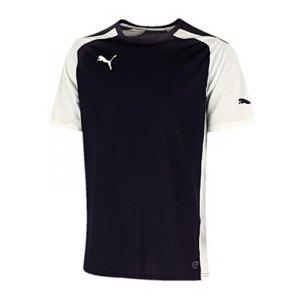 puma-speed-jersey-trikot-kurzarmtrikot-trikot-kurzarm-sportbekleidung-men-herren-maenner-blau-weiss-f06-701906.jpg
