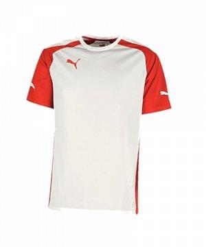 puma-speed-jersey-trikot-kurzarmtrikot-trikot-kurzarm-sportbekleidung-men-herren-maenner-weiss-rot-f12-701906.jpg
