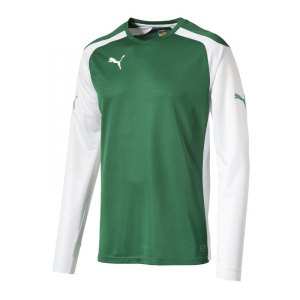 puma-speed-jersey-trikot-langarm-langarmtrikot-longsleeve-teamwear-kids-kinder-children-gruen-weiss-f05-701909.jpg